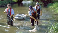 indiana-waterway-fish-sampling
